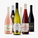 MIX vín, VINIUM, přívlastkové víno, jakostní odrůdové víno, hroznový mošt, frizzante